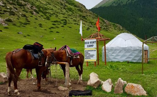 2400 meetri kõrgusel asuv Altõn–Arashani org Kõrgõzstanis.