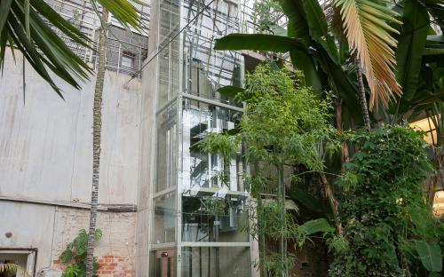 Botaanikaaia palmihoone lift.